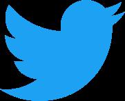 Twitter_bird_logo_2012.svg